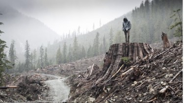 The environment the white house genocide three sundance docs